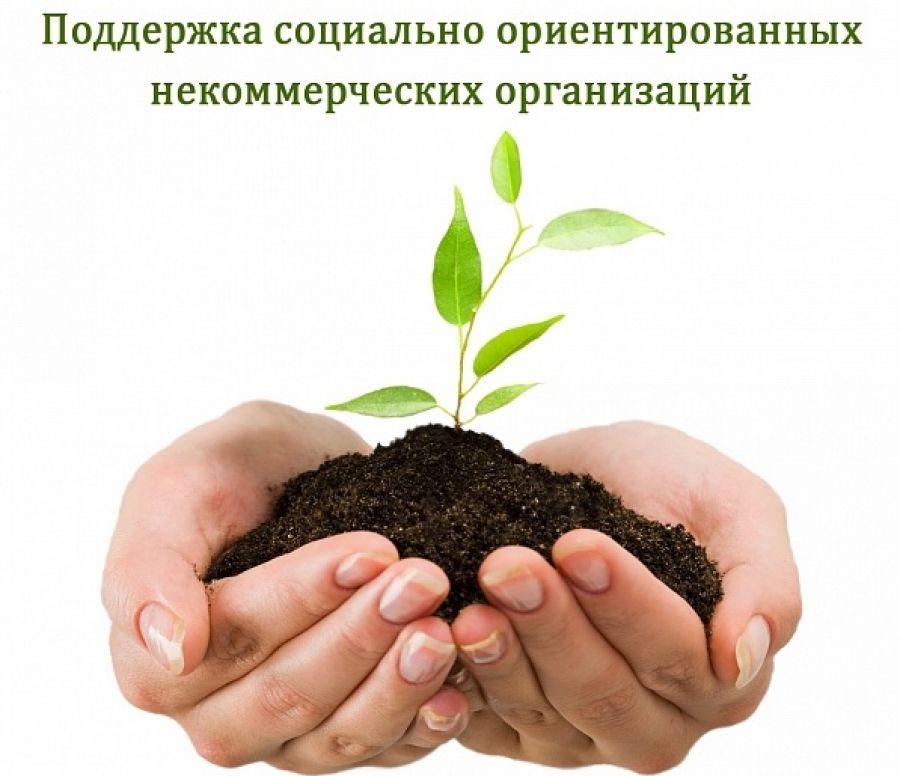 gallery_1_mjeboo-zeljonyj-poljus-ispolnitel-obshhestvenno-poleznyh-uslug-3