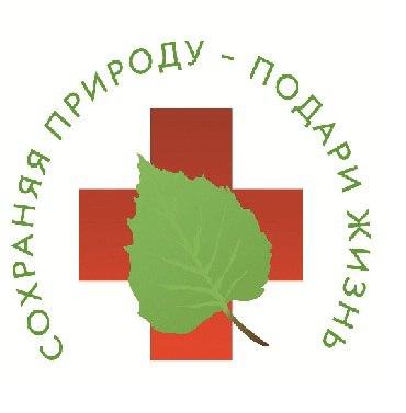 gallery_1_grazhdanskoe-obedinenie-vologdanepomojka-o-mjeboo-zelenyj-poljus-5