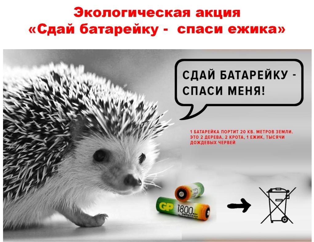 gallery_1_grazhdanskoe-obedinenie-vologdanepomojka-o-mjeboo-zelenyj-poljus