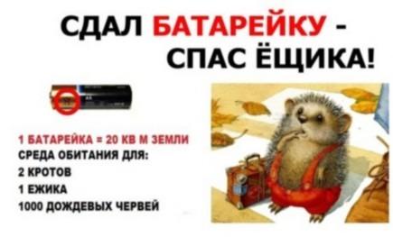 gallery_1_grazhdanskoe-obedinenie-vologdanepomojka-o-mjeboo-zelenyj-poljus-4